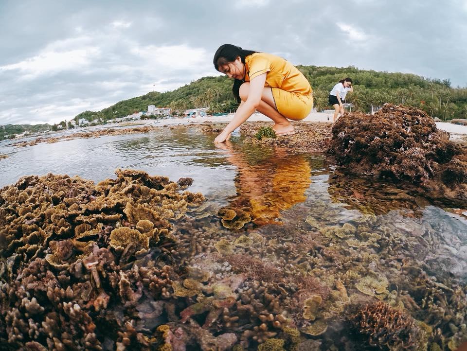 Du lịch đảo Cù Lao Xanh thiên đường trải nghiệm biển đảo