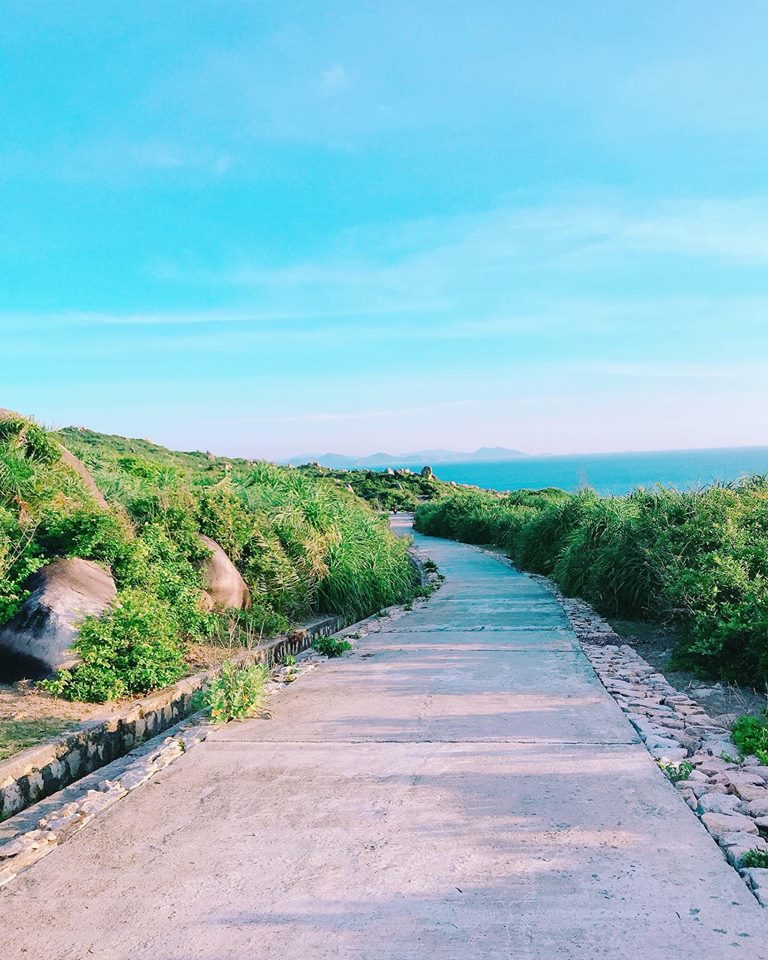 Du lịch Cù Lao Xanh Quy Nhơn điểm đến không nên bỏ qua